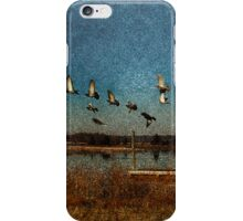 Flight iPhone Case/Skin