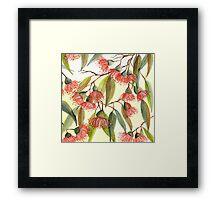 Gum Blossom Love Framed Print