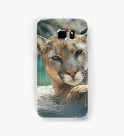 sleepy mountain lion Samsung Galaxy Case/Skin