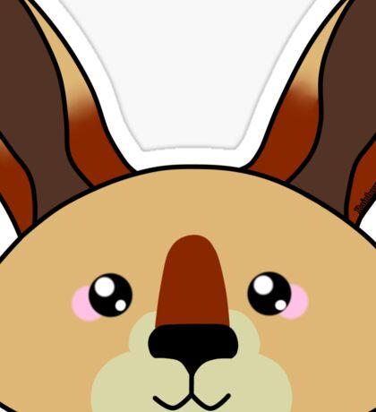 Kangaroo - Australian animal design Sticker