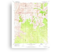 USGS TOPO Map Arizona AZ Peach Springs NE 312812 1967 24000 Metal Print