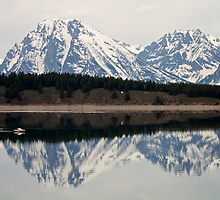 Jackson Lake Reflection by Trent Sizemore