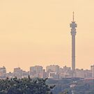 Johannesburg Skyline by Ludwig Wagner