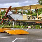 Sopwith Tabloid seaplane replica 3 by Colin Smedley