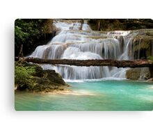 Waterfall With Fallen Tree Canvas Print