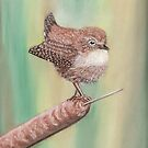 Winter Wren In The Reeds by MagsWilliamson
