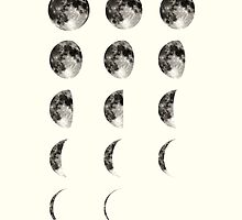 Moon Phases by wolfandbird