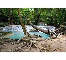 Jungle Stream in Thailand Photographic Print