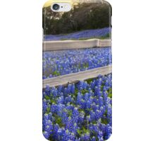 Texas Bluebonnets along a Woodrail Fence Panorama iPhone Case/Skin