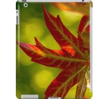 Maple Leaves 2 Perspective #2 iPad Case/Skin