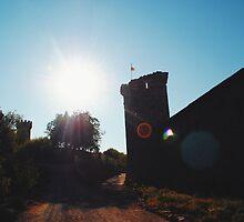 Castle by Santamariaa