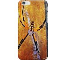 Painted Garden Spider iPhone Case/Skin
