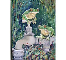 Frogs on Tap... Photographic Print