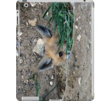 The Fox Cub Perspective #2 iPad Case/Skin