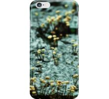 colony iPhone Case/Skin
