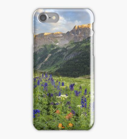 Colorado Wildflower Images - Yankee Boy Basin Summer 2 iPhone Case/Skin