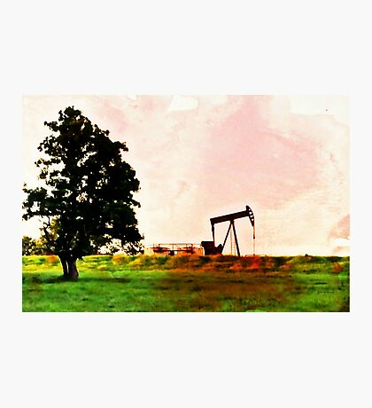 Texas Tea Time Photographic Print