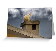 The Hunt Goes On Greeting Card