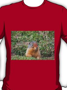 The Ground Squirrel T-Shirt