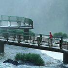 Walkway Iguasso Falls, Brazil by Maggie Hegarty