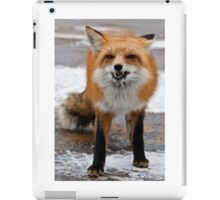 Goofy Fox iPad Case/Skin
