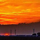 Summer Sun by Thomas Eggert