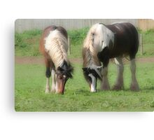 Like mother like daughter Canvas Print