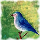 Little blue bird by subhraj1t