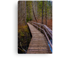Smuggler Cove Boardwalk Canvas Print