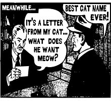 Funny Comic- My Cat. What Does He Want Meow? Photographic Print