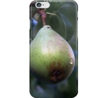 Hanging on iPhone Case/Skin