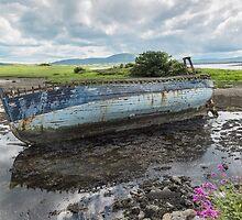 Boat Wreck at Strandhills , Co Sligo, Ireland by Pauline Tims