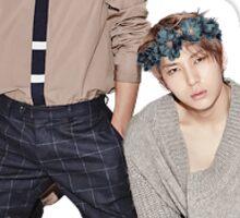 Vixx - Leo & Hakyeon Sticker