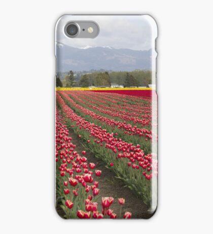 tulip field iPhone Case/Skin
