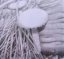 Mushroom, Toadlet Habitat by Lvanderwykart