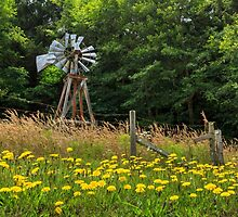 Windmill And Flowers by James Eddy