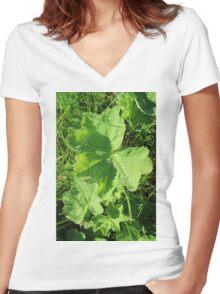 Natur, plant leaves, green, raindropps Women's Fitted V-Neck T-Shirt