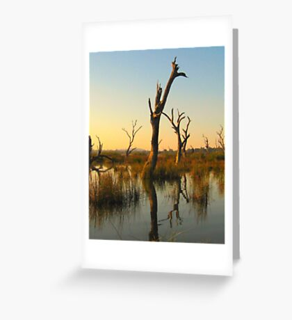 Sculptures in the Swamp Greeting Card
