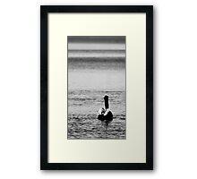 Sitting Pelican Framed Print
