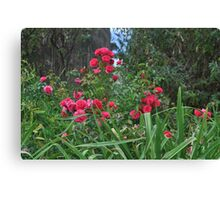 A BUNCH OF ROSES Canvas Print