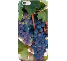 Grapes on the Vine II iPhone Case/Skin