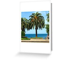 Palm view Greeting Card