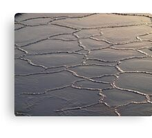 Frozen Saltwater Canvas Print