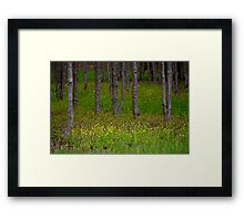 Yellow Patch Framed Print