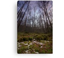 Eerie Cold Canvas Print