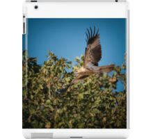 Whistling Kite iPad Case/Skin