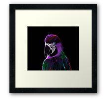 Ara Papageien Seele Framed Print