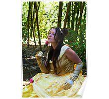A princess Poster