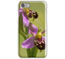 Wild Bee Orchid. (Ophrys apifera) iPhone Case/Skin