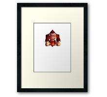 Donkey Kong 64 Framed Print